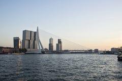 Мост Erasmus в Роттердаме Стоковое Фото