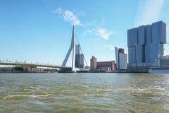 Мост Erasmus и для здания Роттердам вдоль Wilh Стоковые Фотографии RF