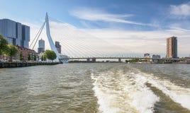 Мост Erasmus и для здания Роттердам вдоль Wilh Стоковое фото RF