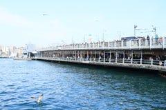 Мост Galata с рыболовами в Стамбуле Стоковые Изображения RF