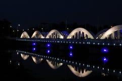 мост napier Стоковые Фотографии RF