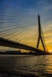 Мост Rama VIII, который кабел-остали мост пересекая Chao Стоковые Фотографии RF
