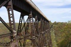 Мост Skywalk Kinzau и парк штата Стоковое Фото