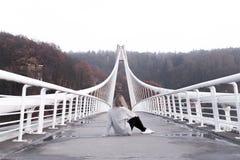 Мост Vranov стоковые фото
