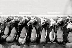 Мотороллеры паркуя в Италии Стоковая Фотография RF