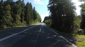 Мотоциклист едет на сценарной дороге пропуская через лес в Австрии Первый взгляд персоны акции видеоматериалы