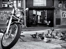Мотоцикл Стоковая Фотография