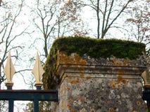 Мох и лишайник покрыли каменное Fencepost Стоковые Изображения