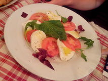 Моццарелла и томаты Стоковое Фото