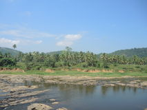 Мочить в Pinnawala Стоковая Фотография