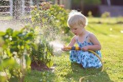 мочить лета заводов девушки сада дня горячий маленький Стоковое Фото