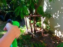 Мочить руки девушки Стоковые Фотографии RF