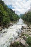 Мощное река горы помыло утесы в древесинах Стоковое фото RF
