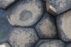Мощёная дорожка гиганта Стоковая Фотография