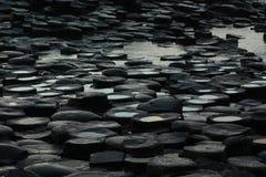 мощёная дорожка гигантский s Стоковая Фотография