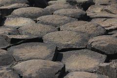 мощёная дорожка гигантский s Стоковая Фотография RF