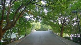 Мощёная дорожка западного озера, Su Стоковая Фотография