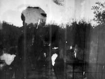 Моя темная тень Стоковое Изображение
