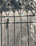 Моя тень смотря до я Стоковое Фото