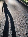 моя тень стоковое изображение rf