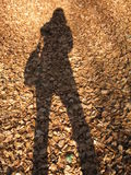 моя тень Стоковые Изображения RF