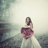 Мода красной розы Стоковое Изображение RF