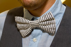 Мода Bowtie Groom Стоковые Фотографии RF