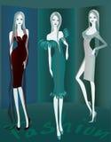 Мода show1 Стоковые Изображения