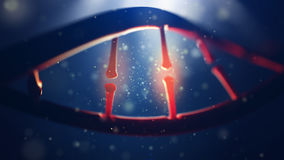 Молекула дна Крупный план человеческого генома концепции Стоковые Изображения