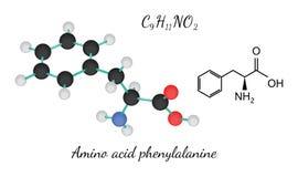 Молекула фенилаланина аминокислоты C9H11NO2 Стоковая Фотография