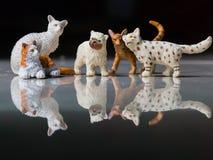 Моделирование кота Стоковые Изображения RF
