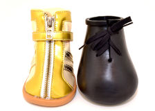 2 модели ботинка собаки Стоковые Фото