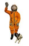 Модельные астронавт и собака Стоковое Изображение