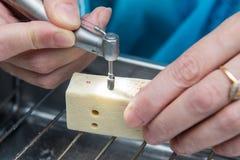 Модельные медицинские implants испытывая оборудование Стоковая Фотография RF