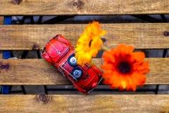 Модельный автомобиль, цветок на столе Стоковые Фото