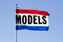 Модельный флаг Стоковые Фото