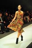 Модельный showcasing конструирует от Erdem на фестивале 2011 моды Audi Стоковые Фото