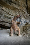 Модель лени Mylodon доисторическая гигантская на входе пещеры Milodon - Патагонии, Чили стоковая фотография rf