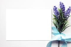 Модель-макет весны лаванды Стоковые Изображения RF