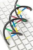 Модель молекулы дна на клавиатуре компьютера Стоковые Фотографии RF
