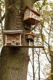Модель небольших домов на стволе дерева Стоковое фото RF