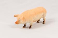 Модель свиньи игрушки стоковая фотография rf
