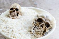 Модель человека черепа Стоковое Изображение