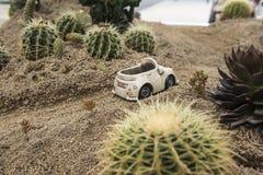 Модель шоссе пустыни стоковое фото rf
