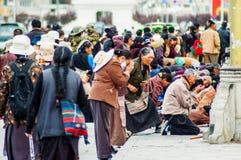 Молитвы сцены тибетского плато стоковые изображения rf