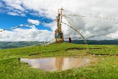 Молить в ветре Стоковое Фото