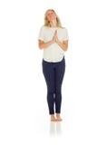 Молить изолированный моделью Стоковые Фотографии RF