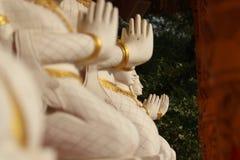 молить совместно Стоковое фото RF