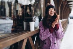 Модная портрета стильная и красивая девушка в снежной погоде стоковые изображения rf
