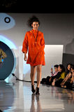 модный парад Стоковые Изображения